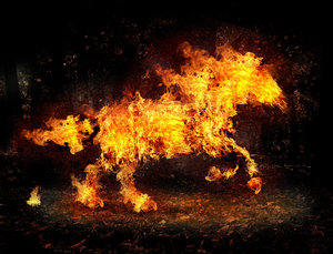 fire_horse_by_salhi1