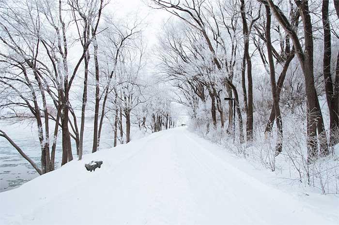 foto-gratis-paisaje-nieve