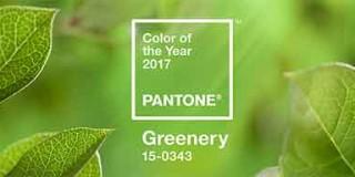 Greenery, color pantone del año 2017